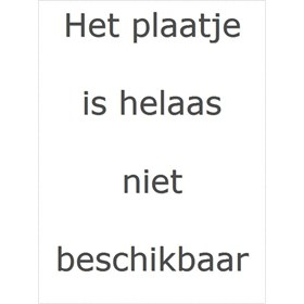 Klean Kanteen Reflect Waterfles rvs Klean Kanteen