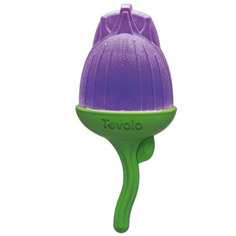 IJsvormpjes Bug Pop 6 stuks Tovolo zelf ijsjes maken bpa-vrij