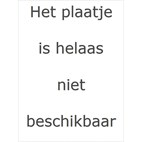 Eddy+ Kids RVS Thermosfles 350 ml CamelBak